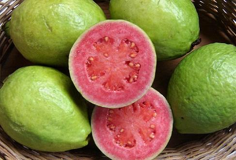 pierde greutatea cu frunze de guava