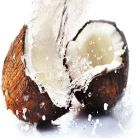 Ce stim si ce nu stim despre nuca de cocos?