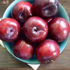Dieta lunii august: scapa de kilogramele in plus cu prune!