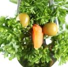 Mituri despre legume