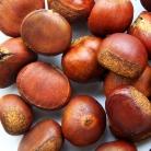 Top sase fructe de toamna