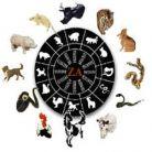 Horoscopul japonez si grupa de sange
